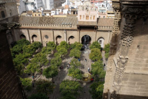 The orange trees in the courtyard, as seen from the Seville Cathedral rooftop tour