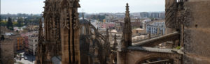Seville Cathedral rooftop tour