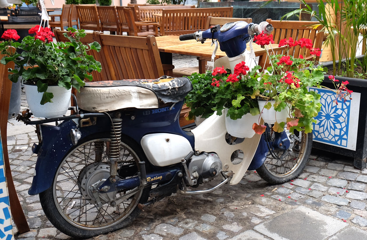 A vintage motorbike, repurposed as a flower planter in Bucharest