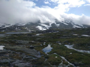 The landscape on the Bergen to Oslo railway line just after Myrdal