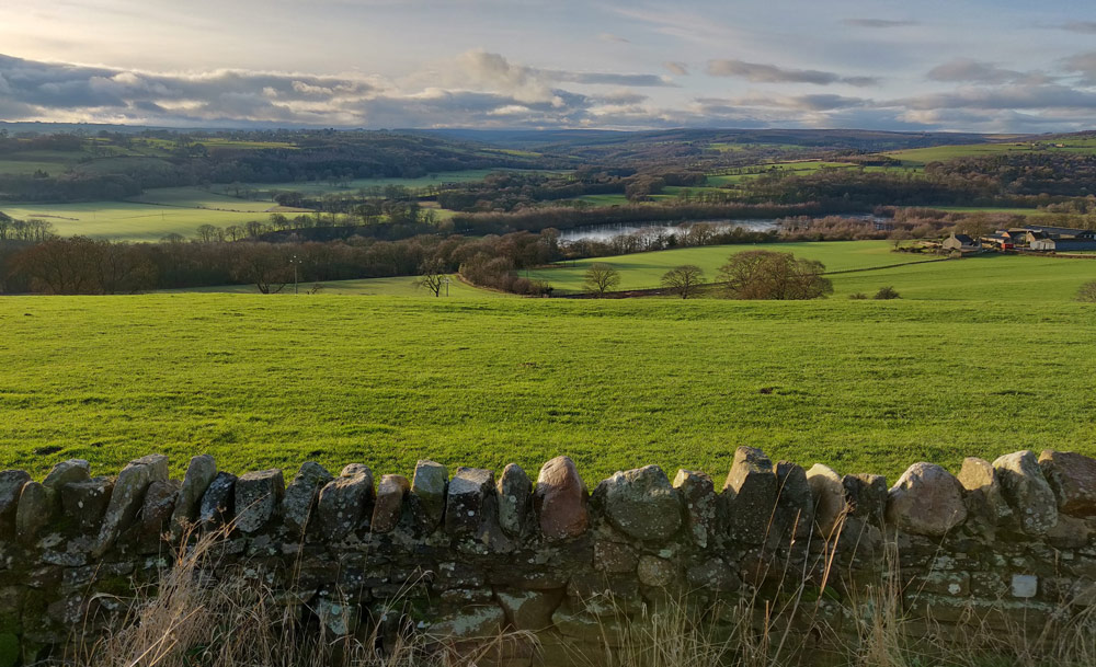 The big skies and green landscape of the Durham Dales, my last trip of 2018; back home for Christmas