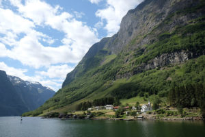 We did the Norway in a Nutshell tour - which includes a boat trip on the Nærøyfjord - on my 40th birthday