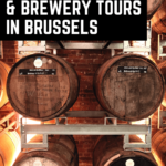 Beer tasting and brewery tours in Brussels