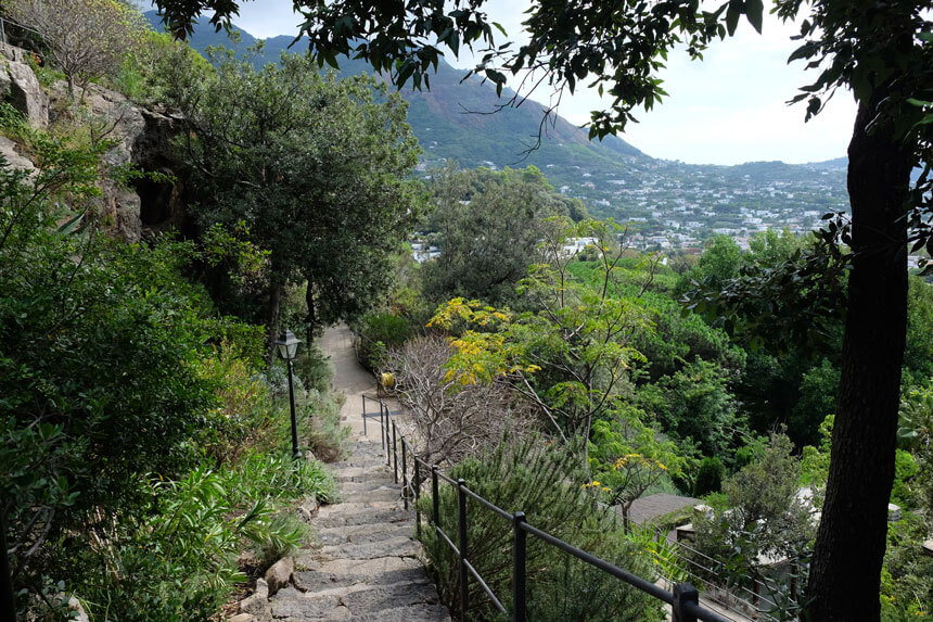 Climbing up out of the Valley Garden and into the Mediterranean Hill Garden at la Mortella