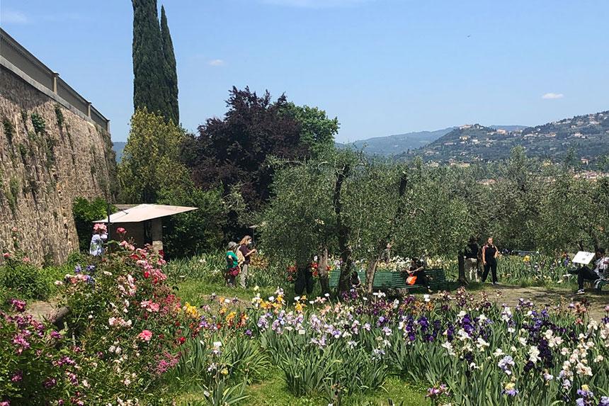 The Iris Garden in Florence, Italy