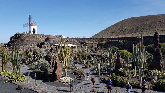 The Cactus Garden on Lanzarote