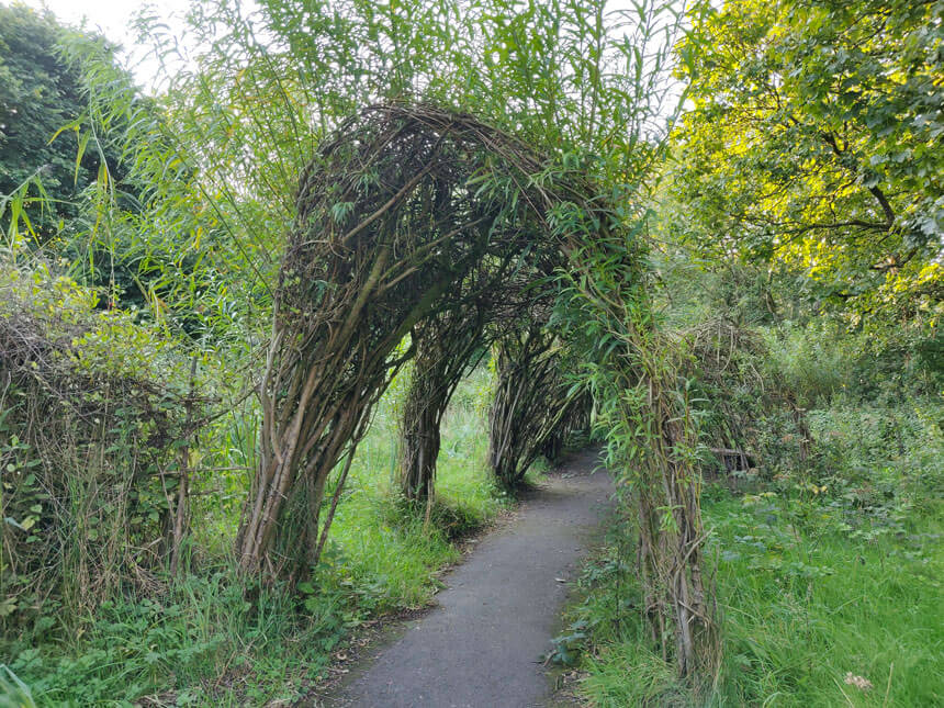 A footpath leads through a living tunnel made of willow branches. The willow tunnel and bower was created as part of an art project.